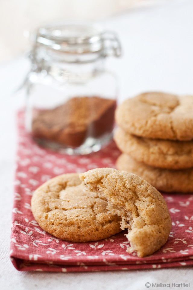 Chai Snickerdoodles and Cookie Monster