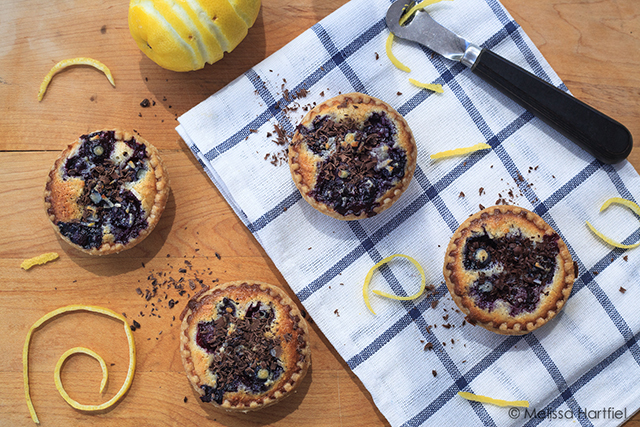 blueberry coconut tarts with lemon zest
