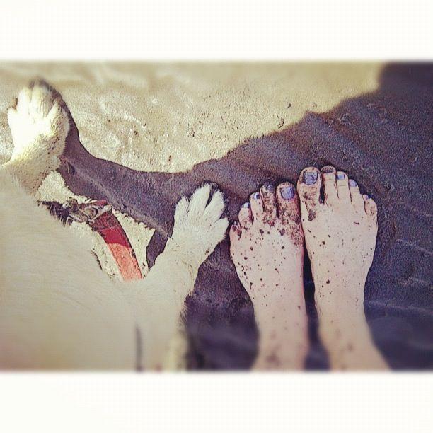 dog paws and human feet