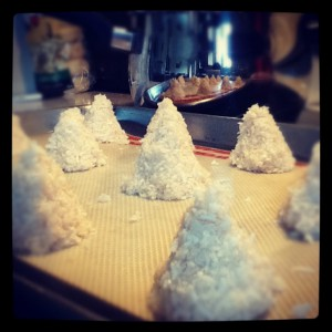 Unbaked Coconut Trees