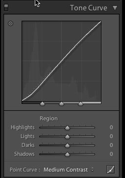 Point Curve in Lightroom
