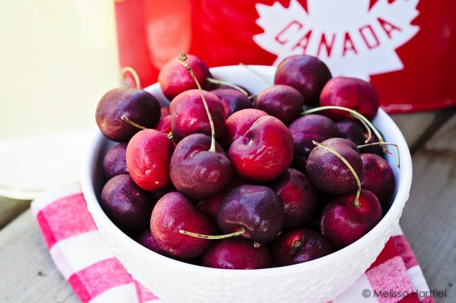 Cherries on Canada Day