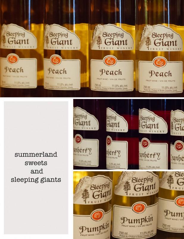 sleeping giant winery