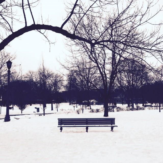 Snowy Trinity Bellwood Park, Toronto