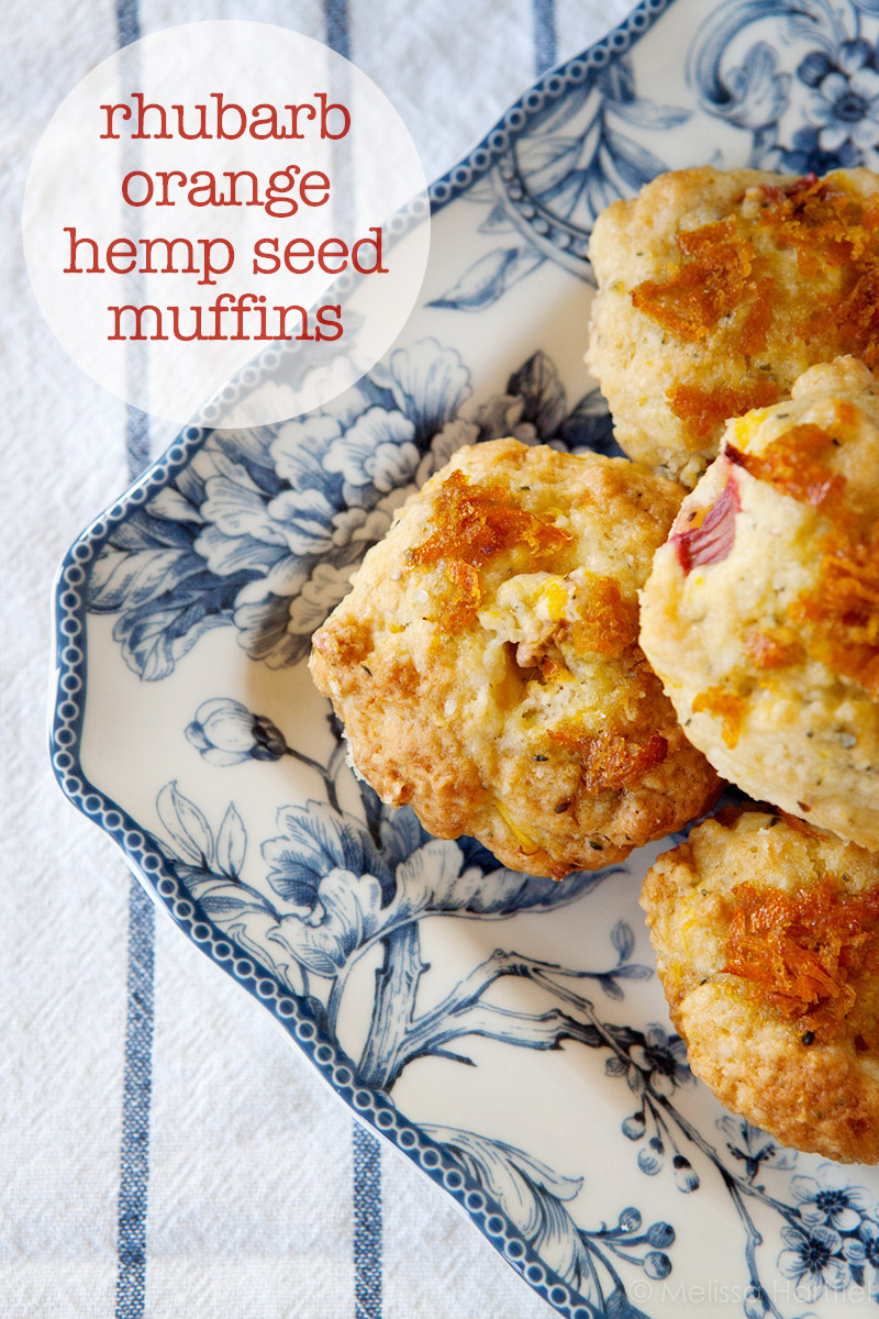 rhubarb orange hemp seed muffins | eyes bigger than my stomach