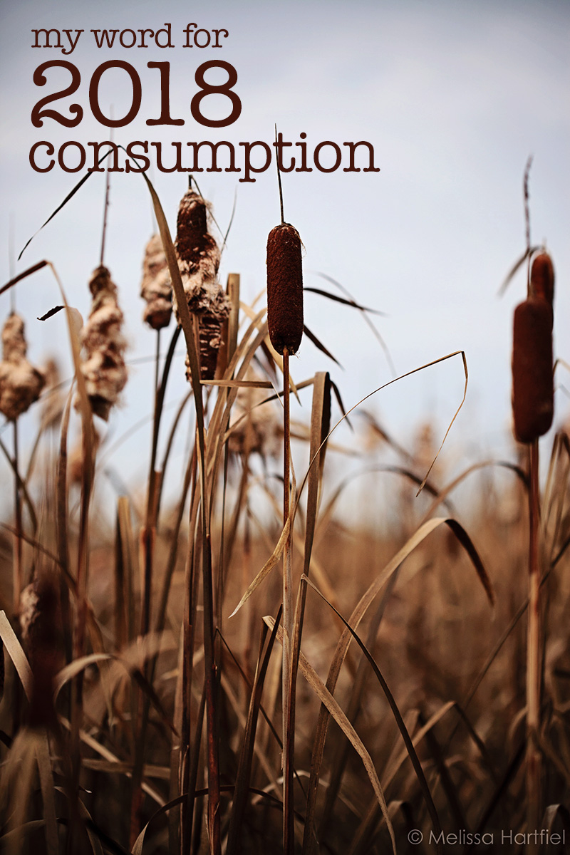 My 2018 Word: Consumption